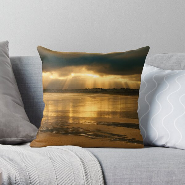 Donabate Strand in December Throw Pillow