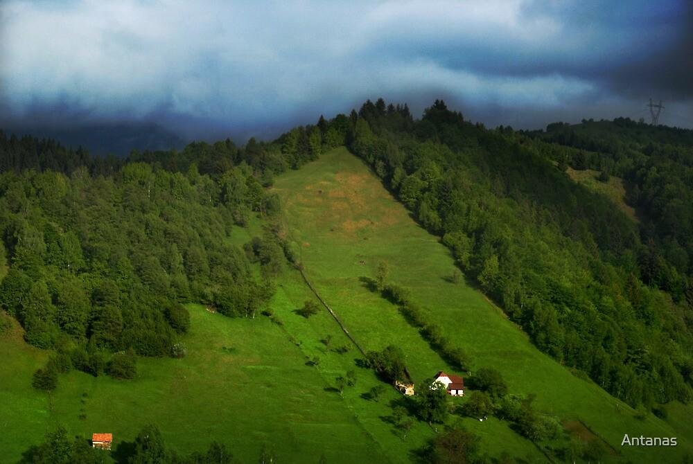 Lonely houses in mountains, Romania, Transylvania Region by Antanas