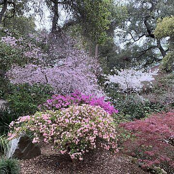 Spring - Garden in Bloom by agnessa38