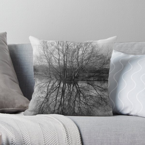 Flood Reflections Throw Pillow