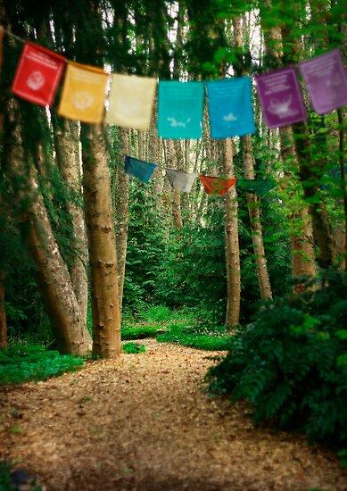 Aldermarsh Path by Aimee Stewart