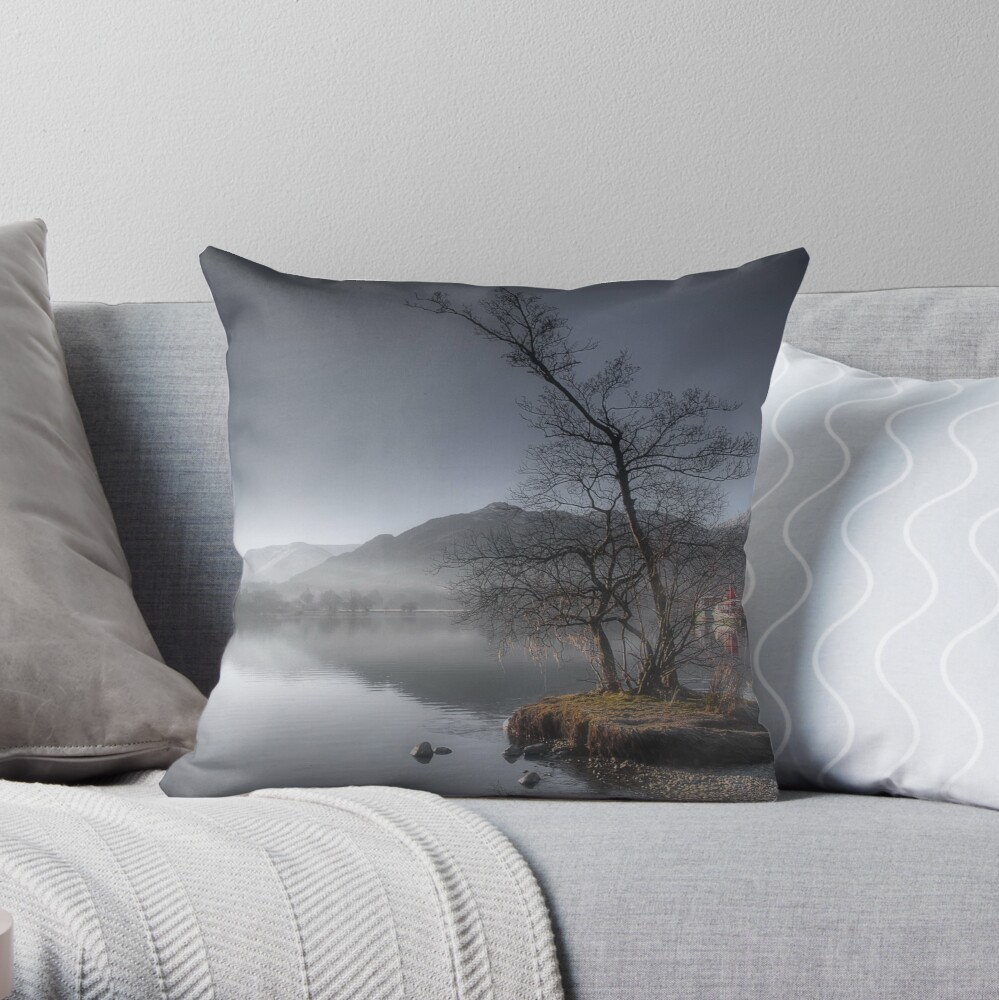 Winters Morning Throw Pillow