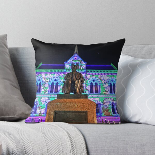 Mitchell Building Northern Lights Throw Pillow