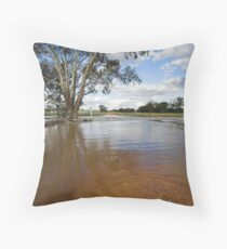 Flooding - Macaulays Lane, Junee Reefs Throw Pillow