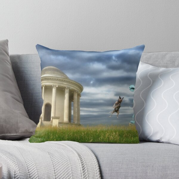 A Sporting Chance Throw Pillow