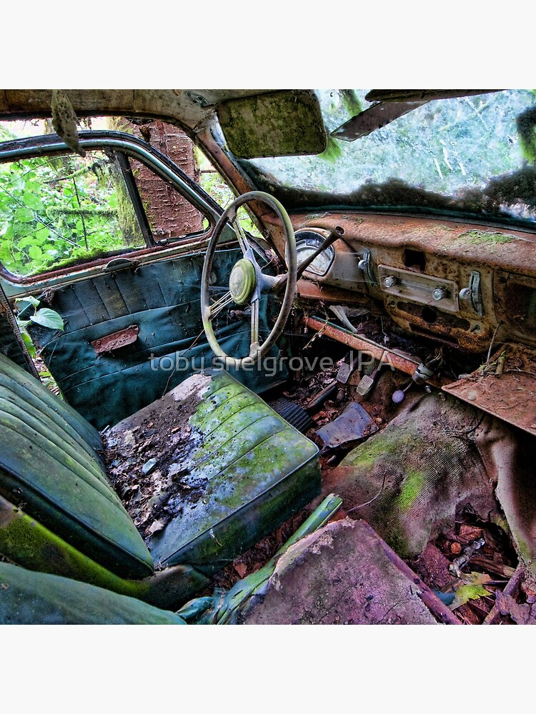 Car in the woods, Front Seat by tobysnelgrove