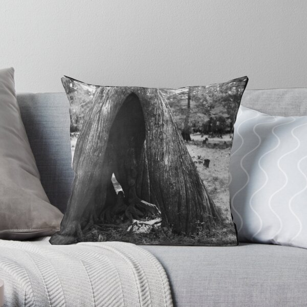 Cypress Cave Throw Pillow