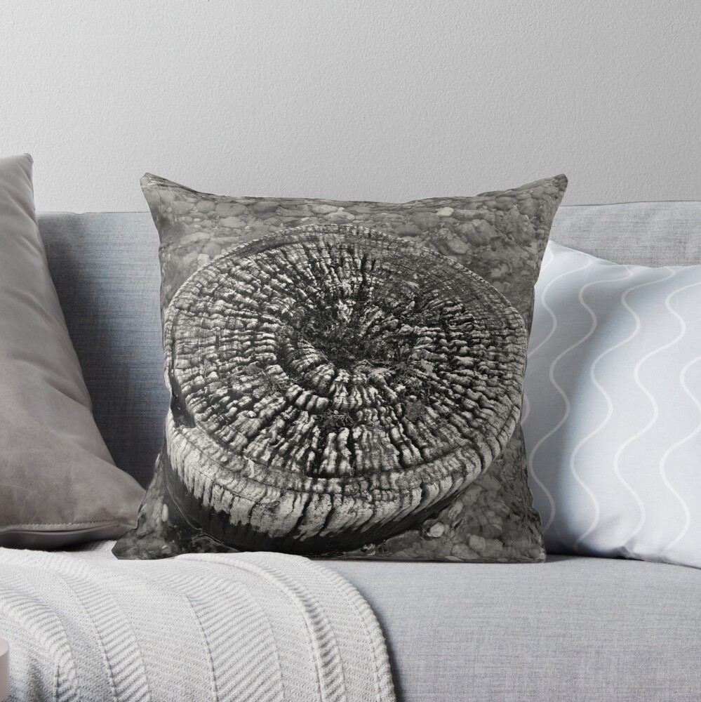 Lost Jetty Throw Pillow