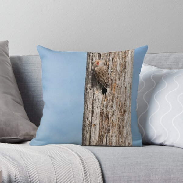 Flicker on a Pole Throw Pillow