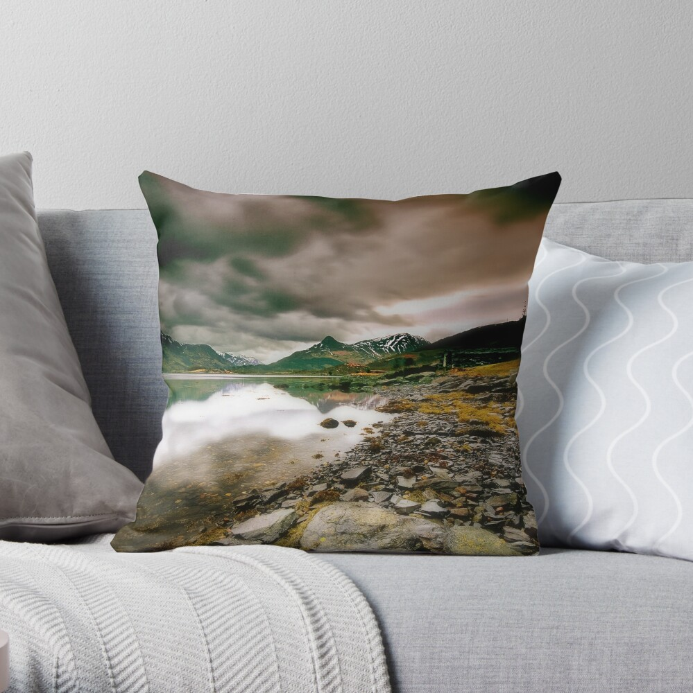 Changeable Throw Pillow