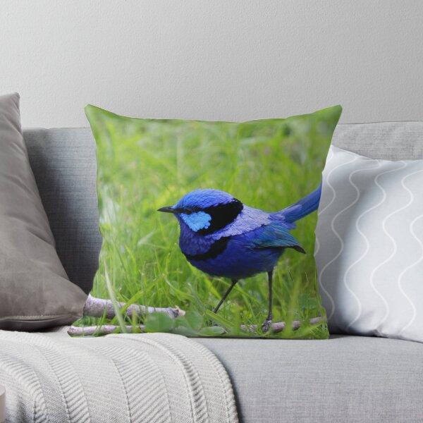 Splendid Fairywren Throw Pillow