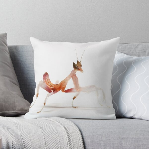 after they shed they look totaly difrent.2nd instar - orchid mantis  Throw Pillow