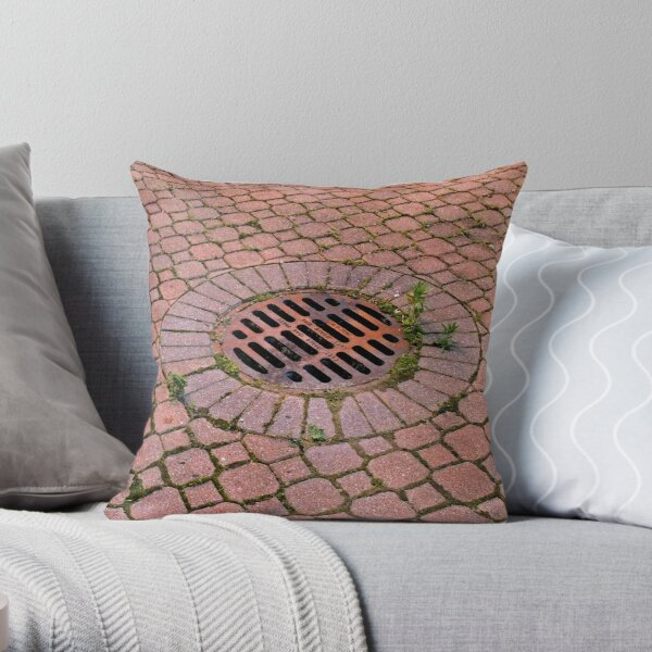 Grate and Pavers Throw Pillow