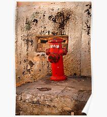 Salvador, Brasil 7319 Poster