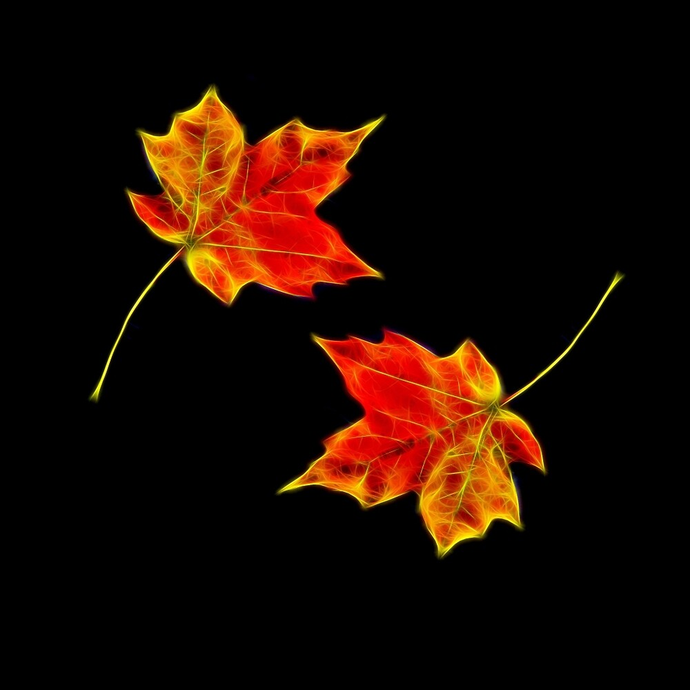 """autumn leaves black background"" by 7akami 