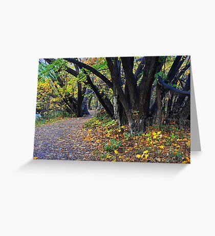 Autumn along the Arrow Greeting Card