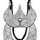 «Conejo blanco y negro» de artetbe