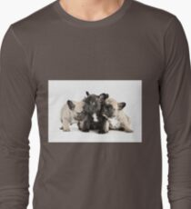 Frenchie Pals Long Sleeve T-Shirt