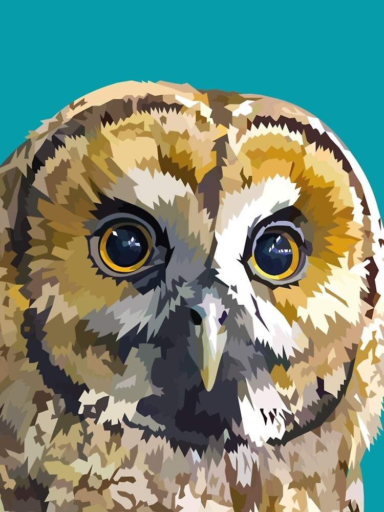 Sparkly eyed Owl  by Elviranl