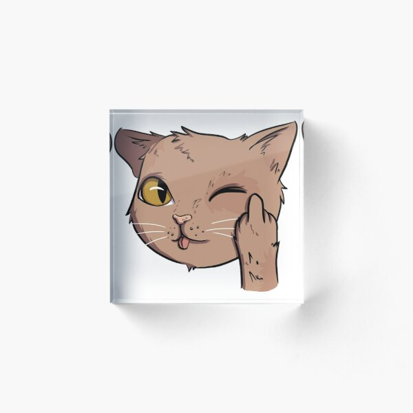 Rude cat with middle finger Acrylic Block