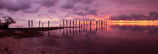 First Light Pano by Steve Chapple
