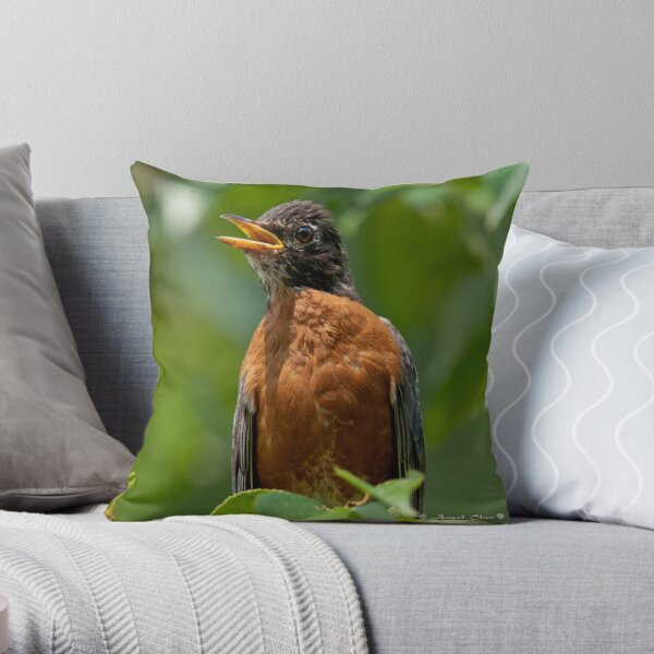Robin Mama Throw Pillow