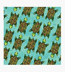 Green Watercolour Ink Drawn Turtle Pattern Photographic Print