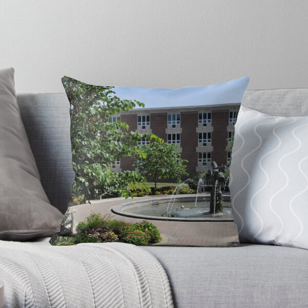 College Life  Throw Pillow
