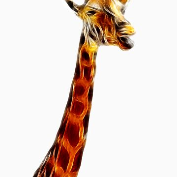 Giraffe by raywoledge