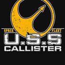 USS Callister Space Fleet by McPod