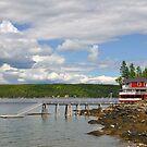 Inlet, Little Deer Island, Maine by fauselr