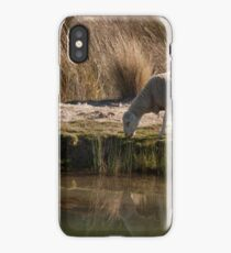 From the Paddock; Reflections iPhone Case/Skin