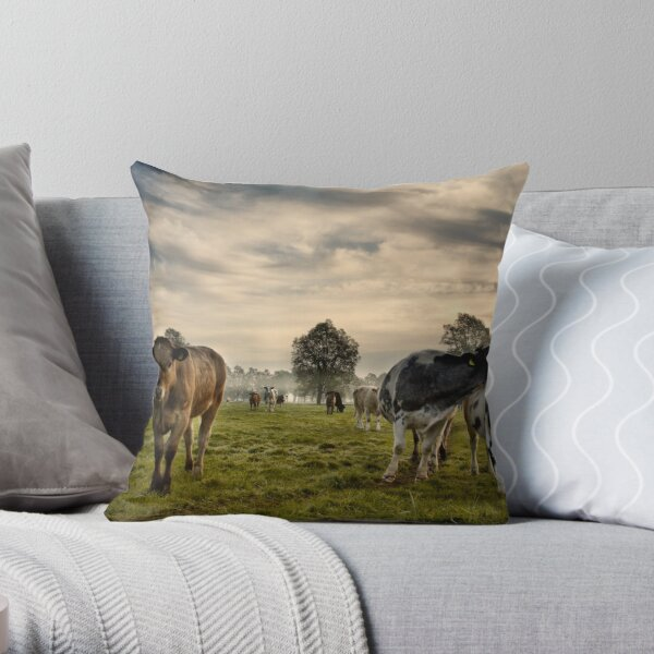 Cows In The Morning Throw Pillow