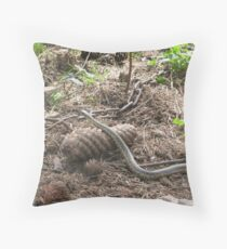 Scales of Creation in Balance Throw Pillow