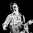 Zappa Groovin by Imagery