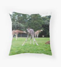 posing giraffes Throw Pillow