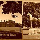 Dalmeny House & King Tom by ©The Creative  Minds