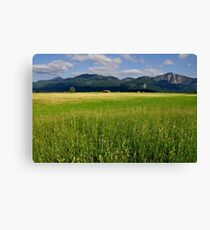 Germany. Countryside. 17. Canvas Print