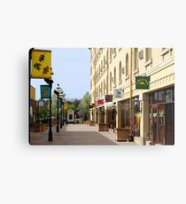 Downtown Waukesha Shops Metal Print
