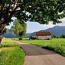 Germany. Countryside. 21. by Daidalos