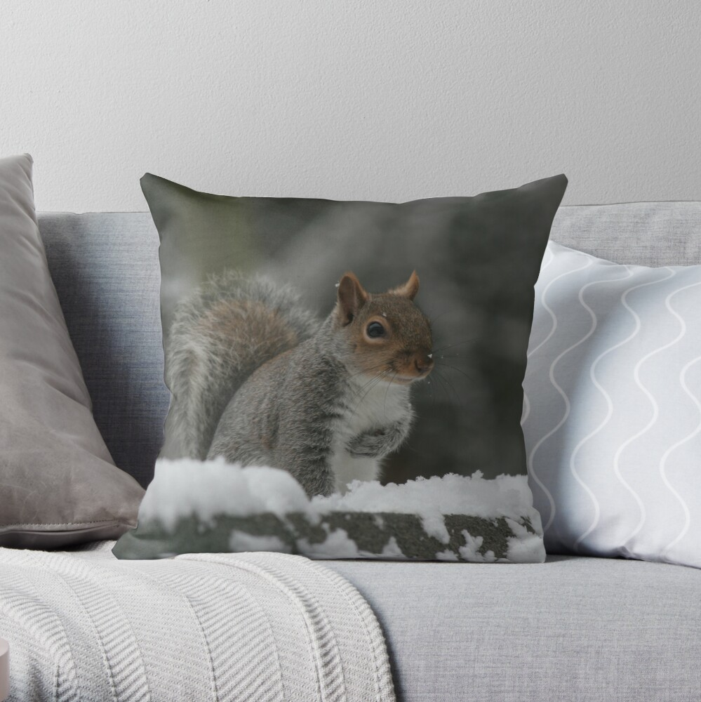 Squirrel 7 Throw Pillow