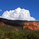 San Diego Canyon, Jemez Springs, NM by F.  Kevin  Wynkoop