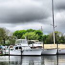 Docked On The Patchogue River by Sharon A. Henson
