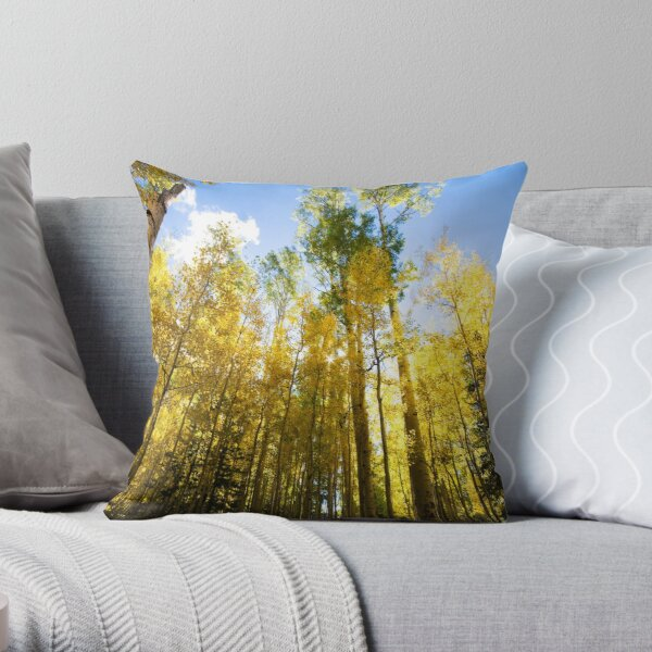 Surrounded by Color Throw Pillow