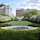 Conservatory Garden Eastward View by Sarah McKoy