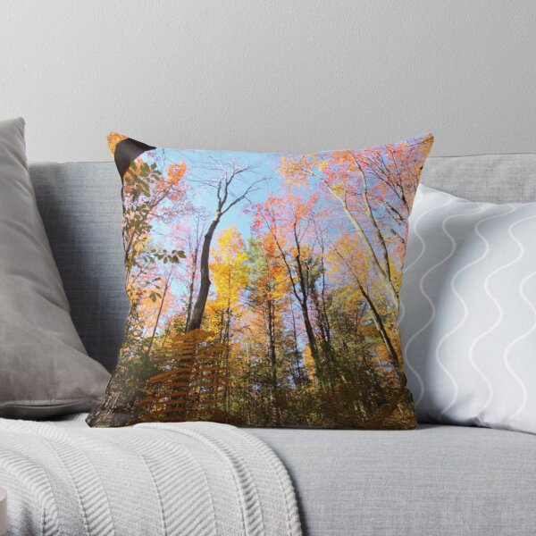 Surrounded by Colour Throw Pillow