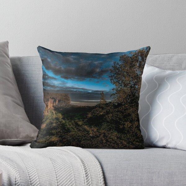 Abandoned Barn Throw Pillow
