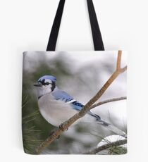 Hiding Out in the Pines Tote Bag