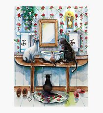 Cats in my Powder Room Photographic Print