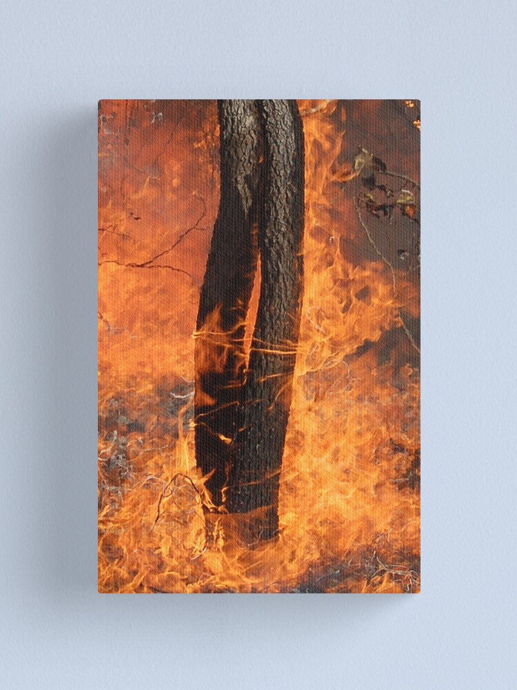 Alternate view of Fingers Of Fire Canvas Print